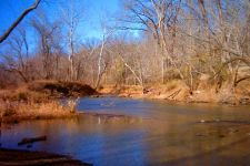 Raleigh Stream at Lassiter Mill