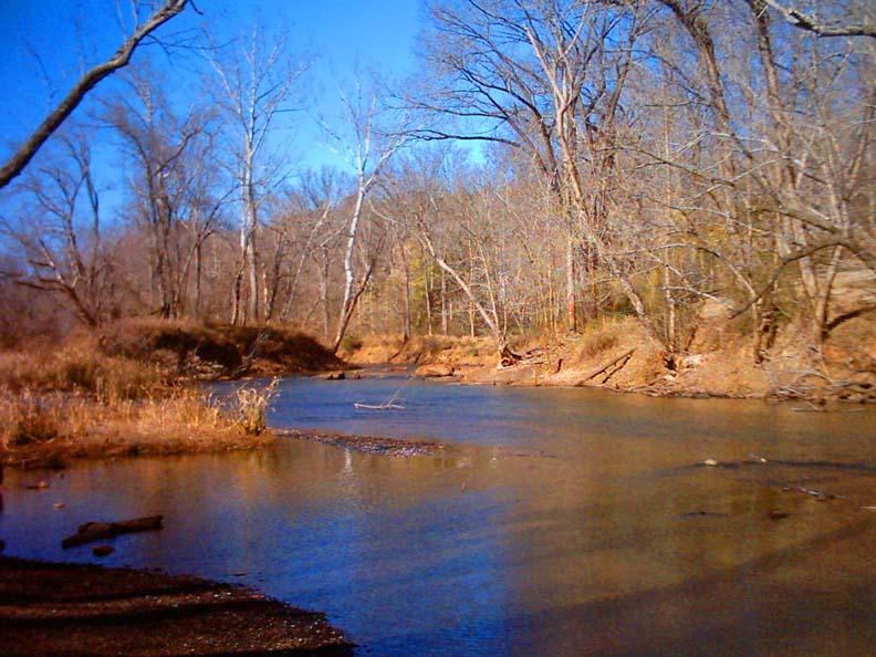 Raleigh North Carolina Stream at Lassiter Mill